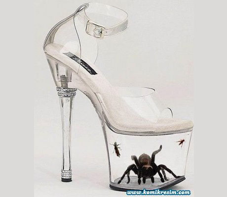Transparent shoes with spider