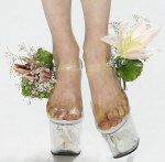 flowers-shoes-by-scherer-gonsales-spring2009
